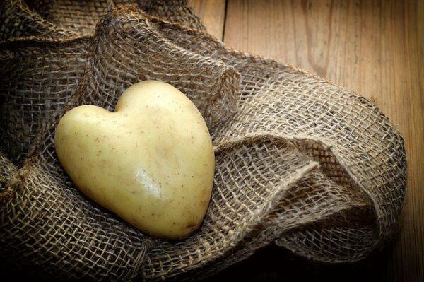 Eine Kartoffel in Herzform liegt auf einem Jutebeutel
