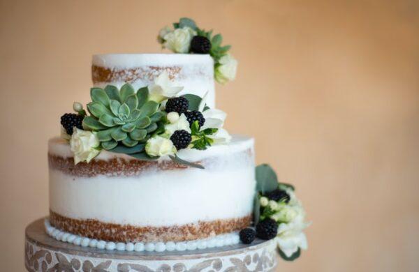 Ein Kuchen wurde mit Sahne, Früchten und Sukkulenten verziert
